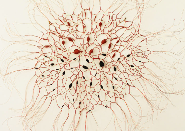 Sally Blake, Reddening, 2015, wire, paper, yarn, ink, 130 x 130 cm. Photo: courtesy of the artist.