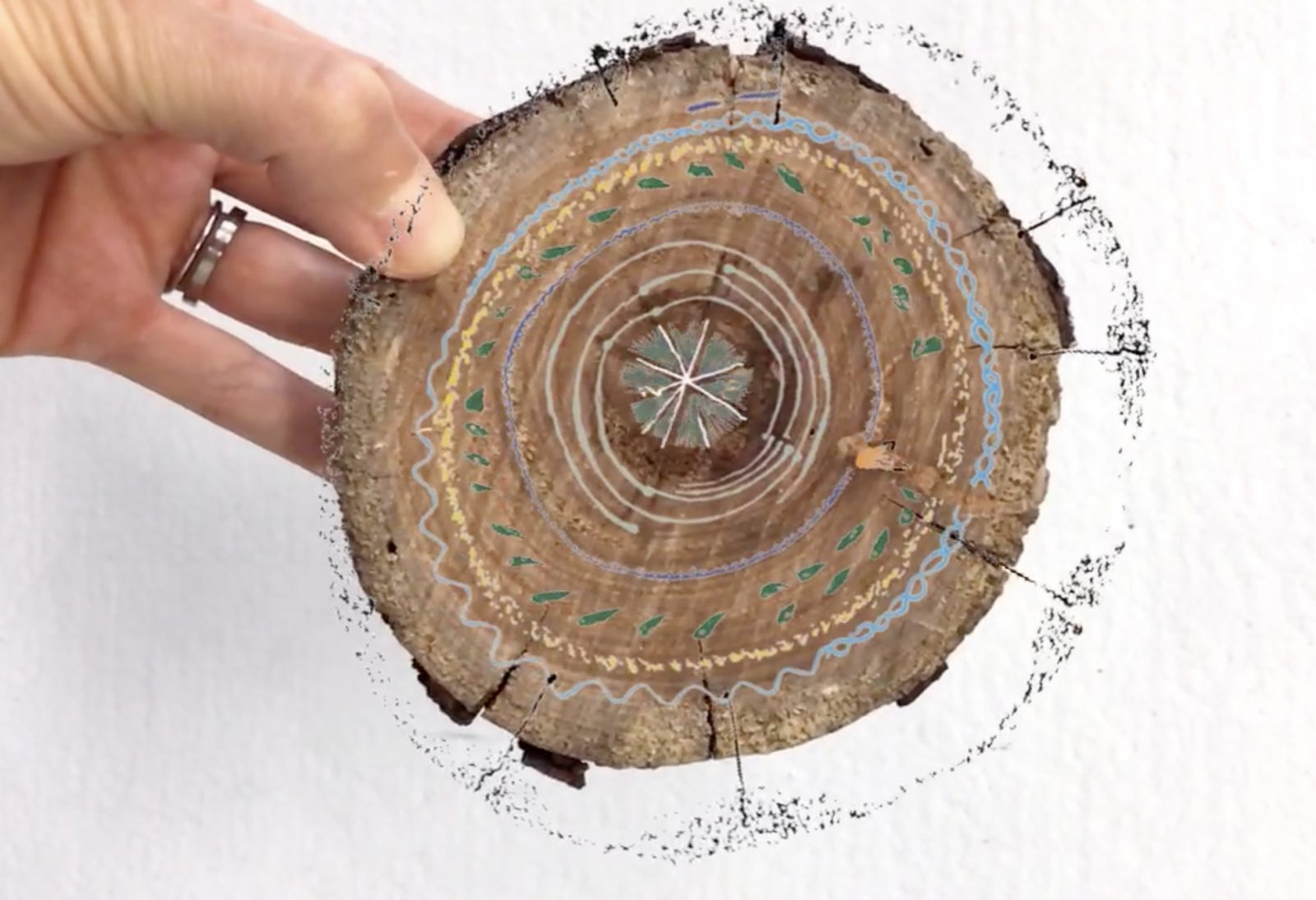 Image: Anna Madeleine, Tree Rings, 2019, screenshot of augmented reality artwork.