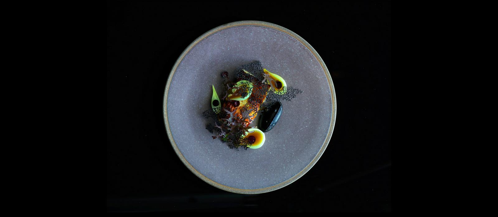 Aubergine. Photo: Jason Loucas